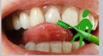Vegane Bio-Zahncreme mit Aloe Vera