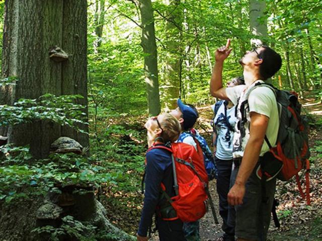 WWF Kinder- und Jugendcamps, Quelle: WWF
