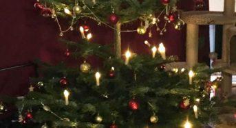 Weihnachtsgrüße – Weihnachten 2016