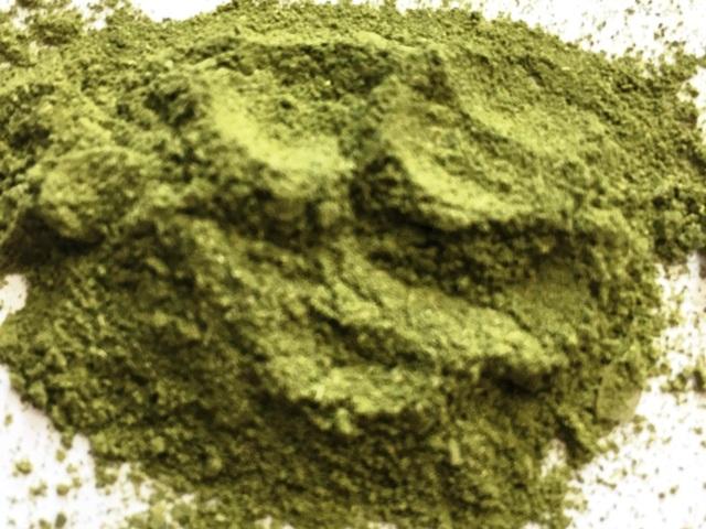 Moringa Oleifera in Pulverform