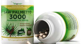Saw Palmetto – Das Beerenextrakt aus der Sägepalme