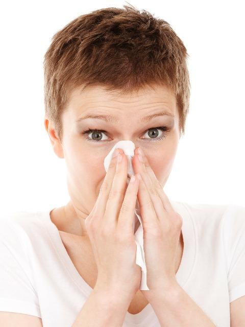 Sommergrippe, Quelle: pixabay