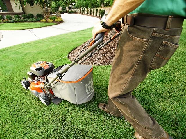 Rasenpflege, Quelle: pixabay