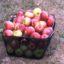 Rezepte für sehr reifes Obst