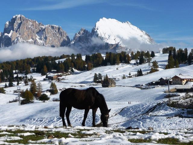 Skiurlaub, SeiserAlm, Quelle: pixabay