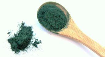 AFA-Algen – Anwendung und Wirkung