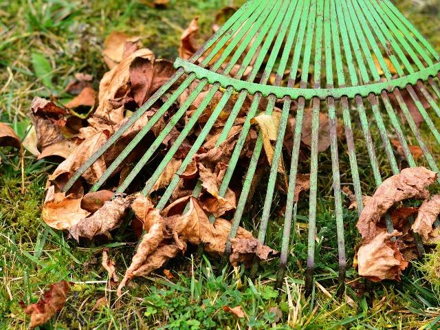 Gartenpflege im Herbst, Quelle: pixabay