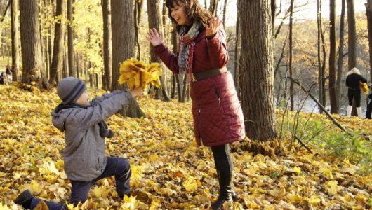 Die schönsten Herbstfarben – Autumn Spirit