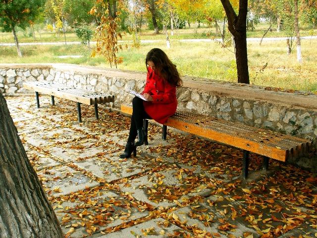 Die schönsten Herbstfarben, Quelle: pixabay