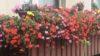 Balkon winterfest machen – so geht es!