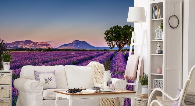 Fototapete Lavendel, Quelle: myloview.de