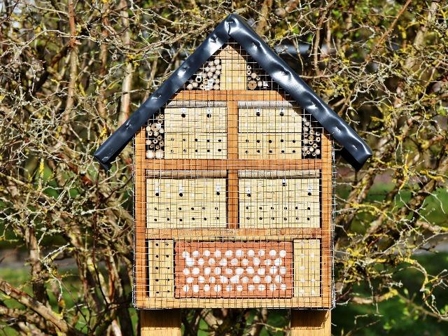 Bienenfreundliche Pflanzen, Bienenhotel,  Quelle: pixabay