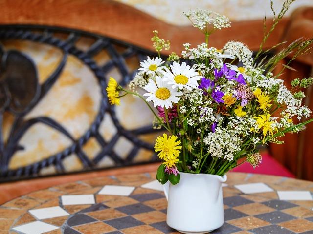 Bienenfreundliche Pflanzen, Quelle: pixabay