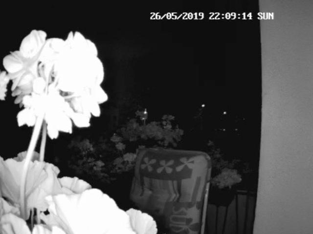 Reolink Überwachungskamera Argus 2, Aufnahme