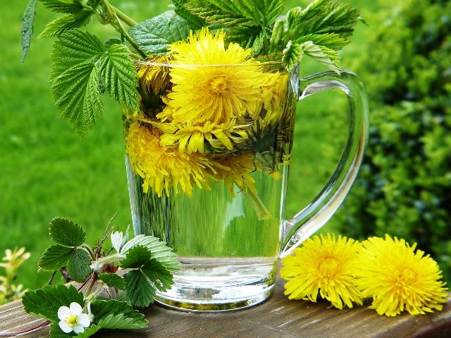 Bitterstoffe, Quelle: pixabay