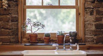 Insektenschutz in Mietwohnungen