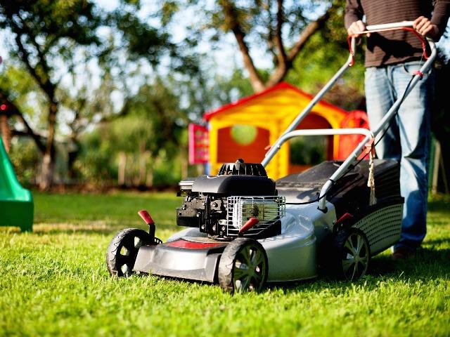 Rasenschäden, Rasenmäher, Quelle: pixabay