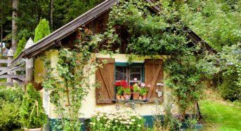 Gartenhaus verschönern