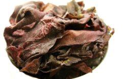 Dulse Algen – Der Geheimtipp unter den Superfoods