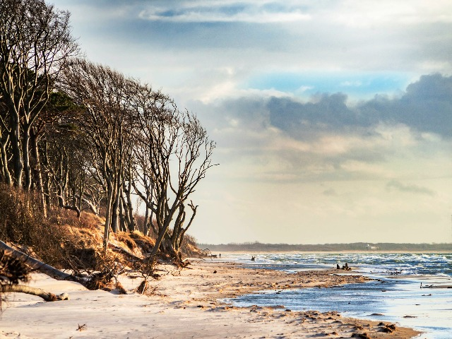 Ostsee Strände, Weststrand Darß, Quelle: pixabay