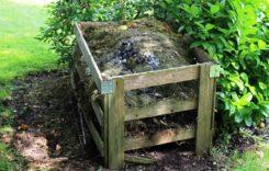 Kompost – Was gehört in den Eigenkompost?