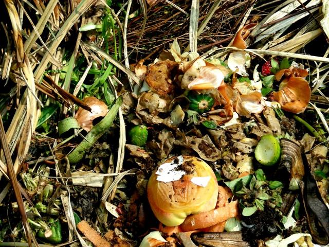 Kompostierung, Quelle:Hartmut910_pixelio.de