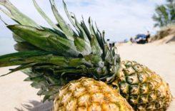 Bromelain – So hilft das Enzym beim Muskelaufbau