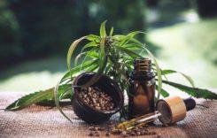 CBD Öl – Wirkung und Anwendungsbereiche