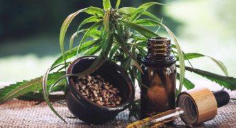 Getränke und Lebensmittel mit CBD-Öl zubereiten